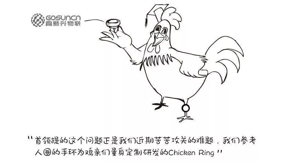 鸡联网时代到来,还能今晚吃鸡吗?
